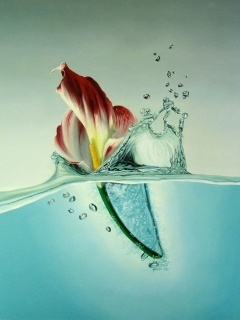 Splash Water Mobile Wallpaper