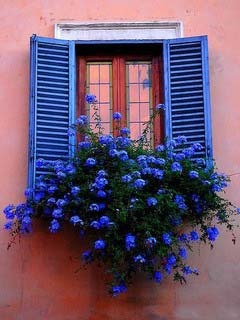 Blue Windows Mobile Wallpaper