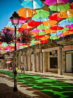 Colors Umbrella Mobile Wallpaper