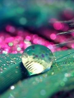 Drops Colors Mobile Wallpaper