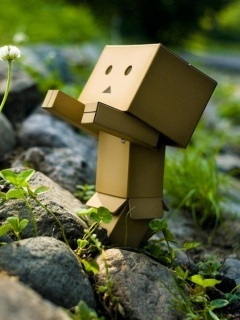 Danbo With Flower Mobile Wallpaper