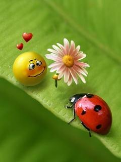 Bug And Smiley Mobile Wallpaper