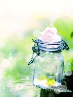 Beautiful In Bottle Mobile Wallpaper