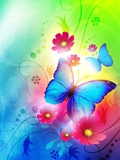 Colors Butterflies Mobile Wallpaper