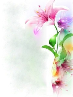 Colors Flowers Mobile Wallpaper