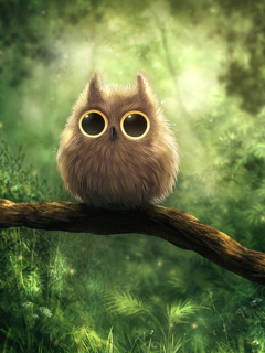 Cute Owl Mobile Wallpaper