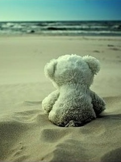 Teddy On Beach Mobile Wallpaper