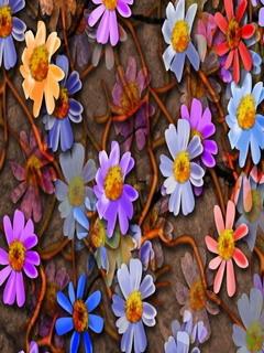 Lovely Color Flowers Mobile Wallpaper