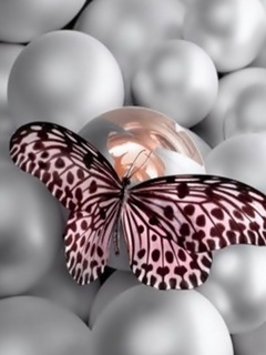 Butterfly On Balls Mobile Wallpaper