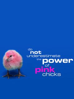 Pink Chicks Mobile Wallpaper