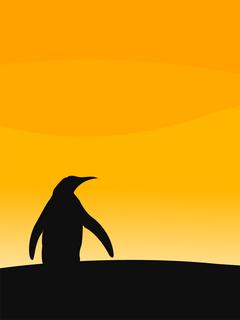 Penguin Lost Mobile Wallpaper