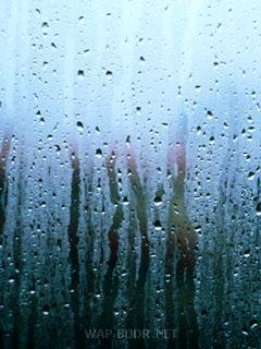 Rain Drops Mobile Wallpaper