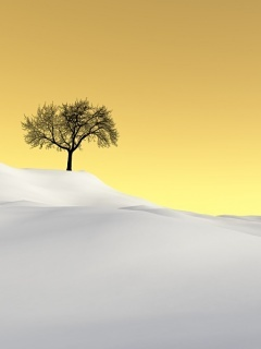 Tree Alone Mobile Wallpaper