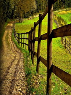 Country Road Mobile Wallpaper
