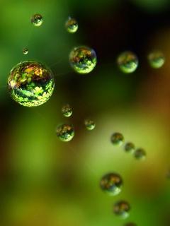 Green Digital Drops Mobile Wallpaper