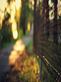 Cool Fence Mobile Wallpaper