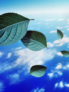 Flying Leafs In The Sky Mobile Wallpaper
