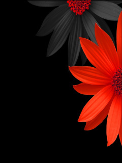 Red & Black Flowers Mobile Wallpaper