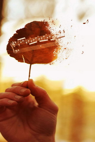 The Leaves Of The Music IPhone Wallpape Mobile Wallpaper
