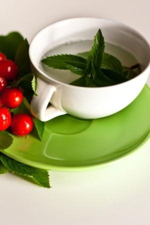 Green Drink Leaf Leave Berrys Mobile Wallpaper