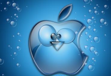 Mac Osx Aqua 7 Mobile Wallpaper
