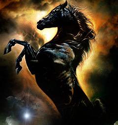 Horse Mobile Wallpaper