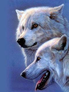 2 Dogs Mobile Wallpaper