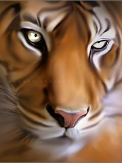 Tiger 3 Mobile Wallpaper