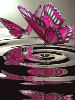 Purple Butterfly Mobile Wallpaper
