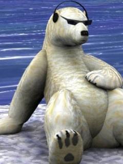 Bear Mobile Wallpaper