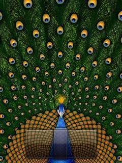 Peacock Mobile Wallpaper