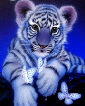 Tiger Mobile Wallpaper