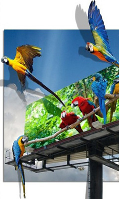 3D Parrots Mobile Wallpaper