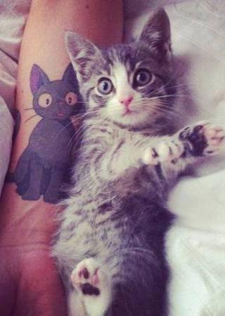 Cute Cat Tattoo Mobile Wallpaper