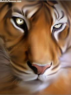 Tiger Eyes Mobile Wallpaper