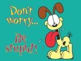 Dont Worry Be Stupid Mobile Wallpaper
