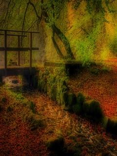 Autumn Bridge Mobile Wallpaper