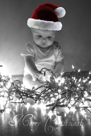 Cutie Pie In Christmas Hat Mobile Wallpaper
