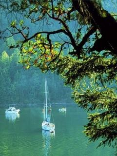Boats Lovely Green Mobile Wallpaper