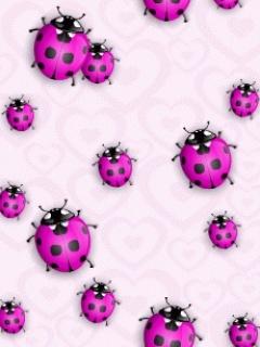 Bugs Mobile Wallpaper