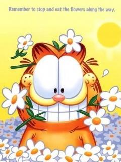 Garfield Mobile Wallpaper