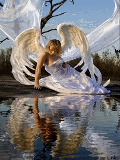Girl Sit On Water And She Is Wear White Clothes And Wings Mobile Wallpaper