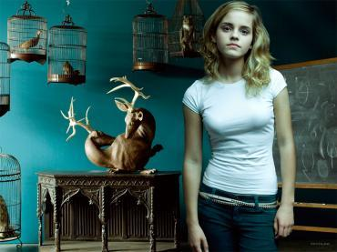 68708 Emma Watson 1024x768 23159 502lo Mobile Wallpaper