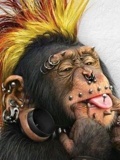 Crazy Monkey Mobile Wallpaper