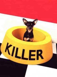 Killer Dog Mobile Wallpaper