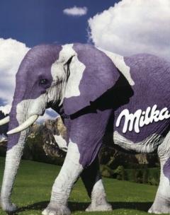 Milk Elephant Mobile Wallpaper