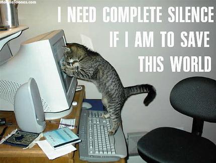 CAT SAVEING WORLD Mobile Wallpaper