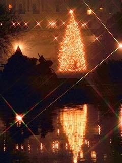 Beautiful Christmas Tree Decorated Mobile Wallpaper