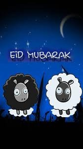 Cute Lambs Eid Mobile Wallpaper Mobile Wallpaper