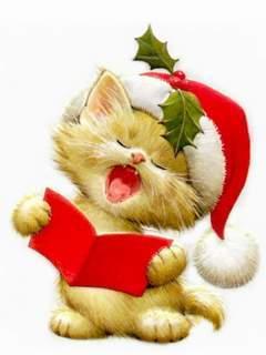 Santa Cat Read Book Mobile Wallpaper